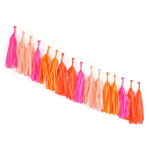 Tissue Paper Tassel Garland Kit - Bright