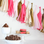Tissue Paper Tassel Garland Kit - Sweetheart