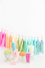 Tissue Paper Tassel Garland Kit - Rainbow