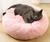 EUDonut Cat Bed Faux Fur Dog Beds Pet Beds for Dogs/ Cats Comfortable and Warm Cuddler Cushion Thick Full Plush - Shop 9ice