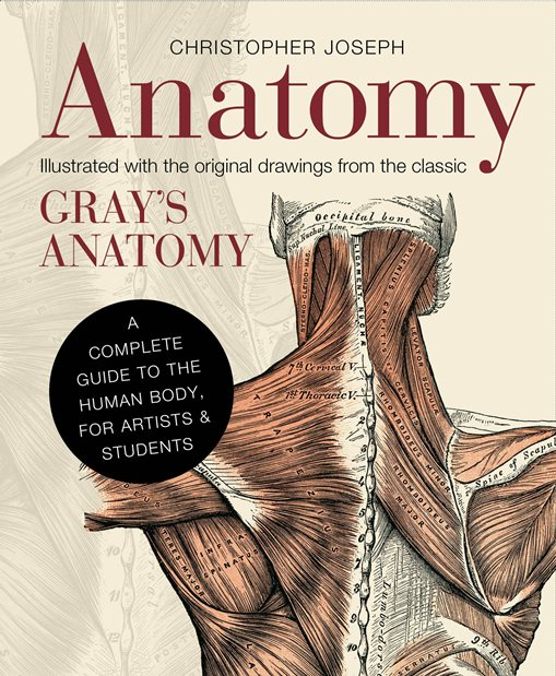 ANATOMY ILLUSTRATED WITH THE ORIGINAL DRAWINGS FROM THE CLASSIC