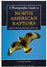 A Photographic Guide To North American Raptors 96