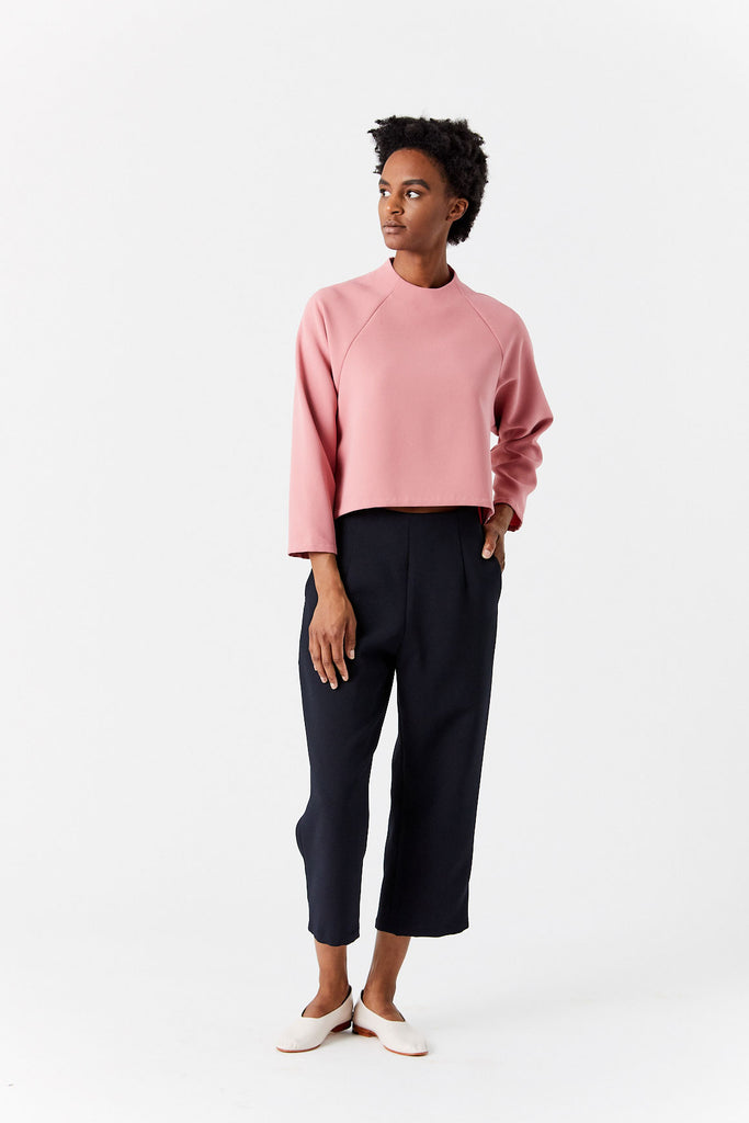 Ostra Long Sleeve Raglan Top, Pink