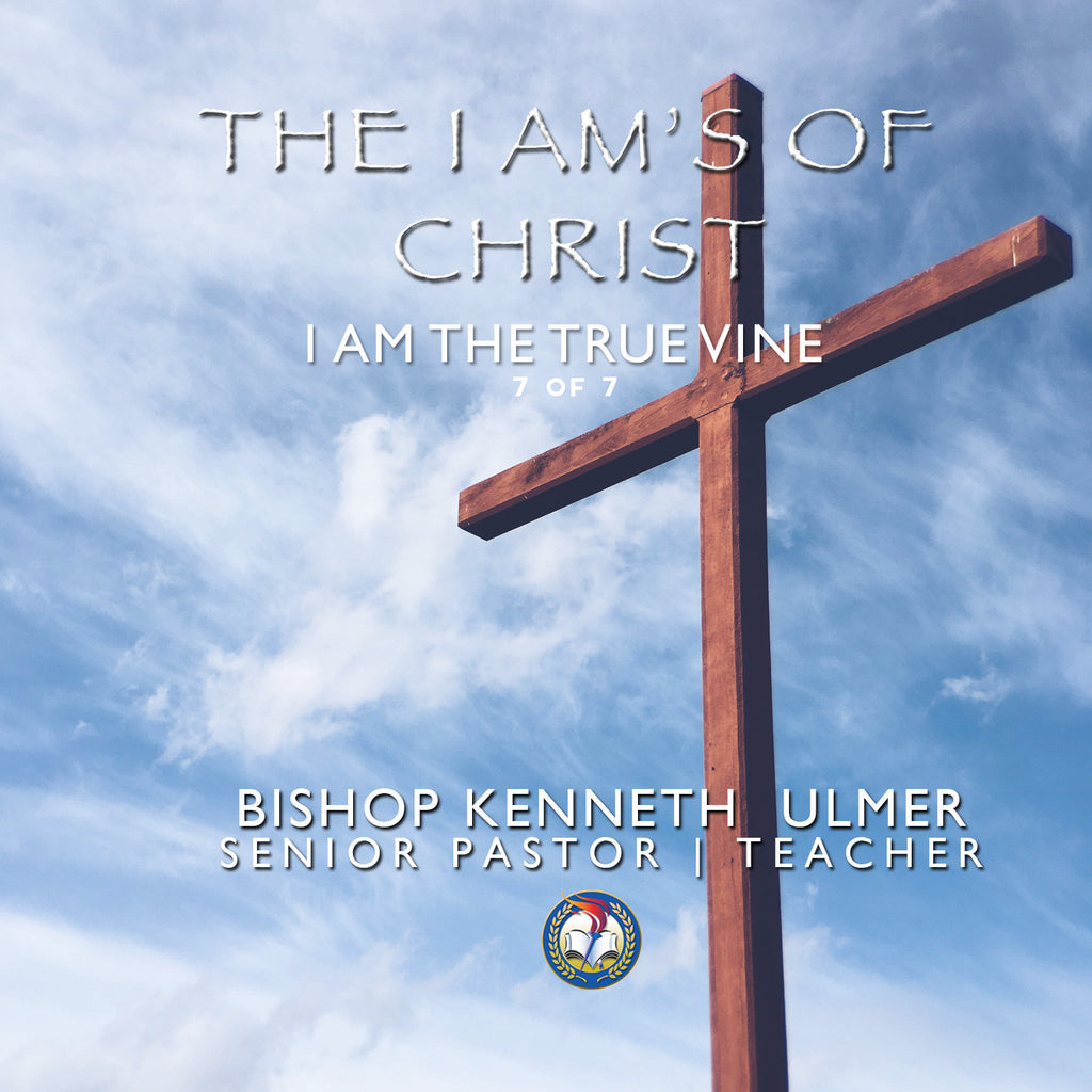 The I AM's of Christ: I AM The True Vine (MP3 Download)