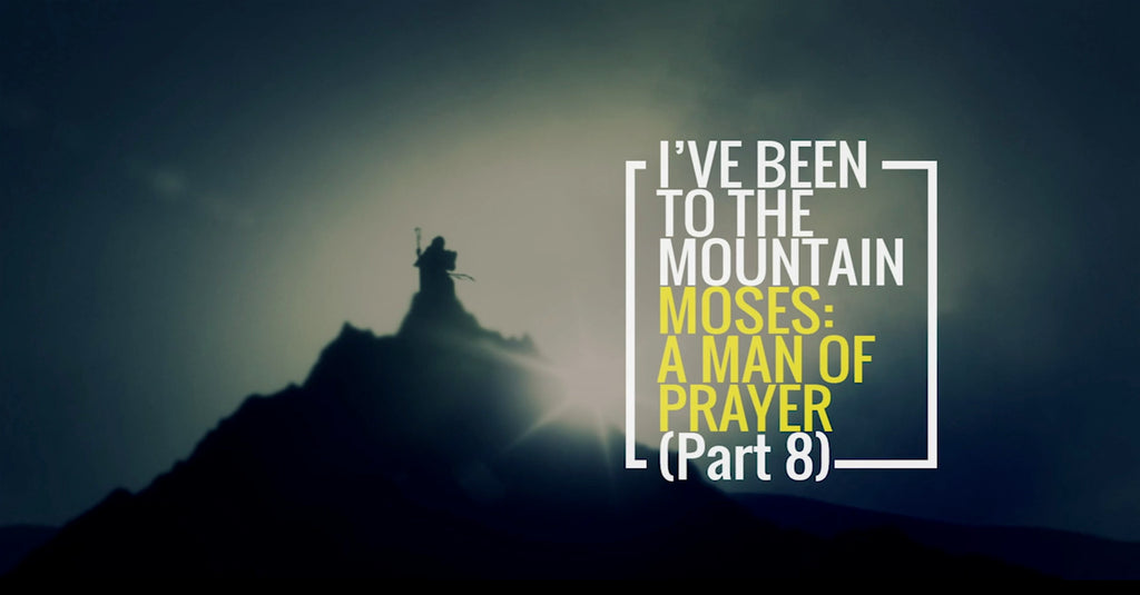 I've Been To The Mountain: Part 8 (MP3 Download)