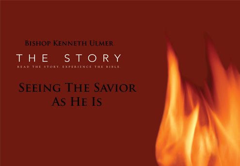 The Story: Seeing the Savior As He Is
