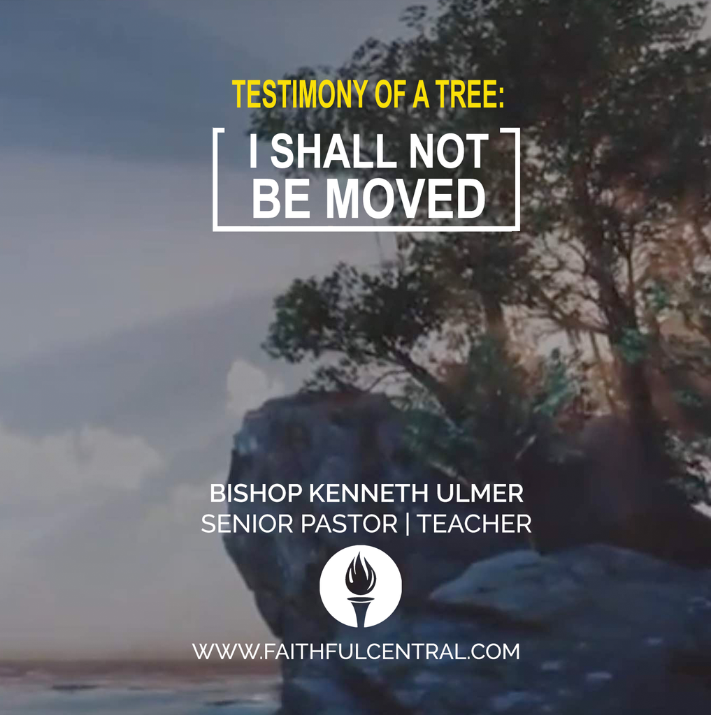The Testimony of A Tree -  I Shall Not Be Moved (MP3 Download)