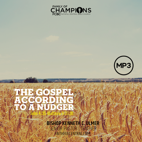 The Gospel According to a Nudger (MP3 Download)
