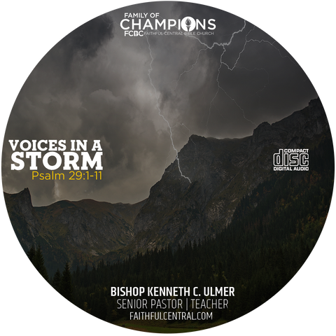 Voices In A Storm (CD)