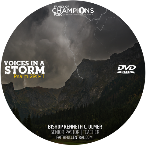 Voices In A Storm (DVD)