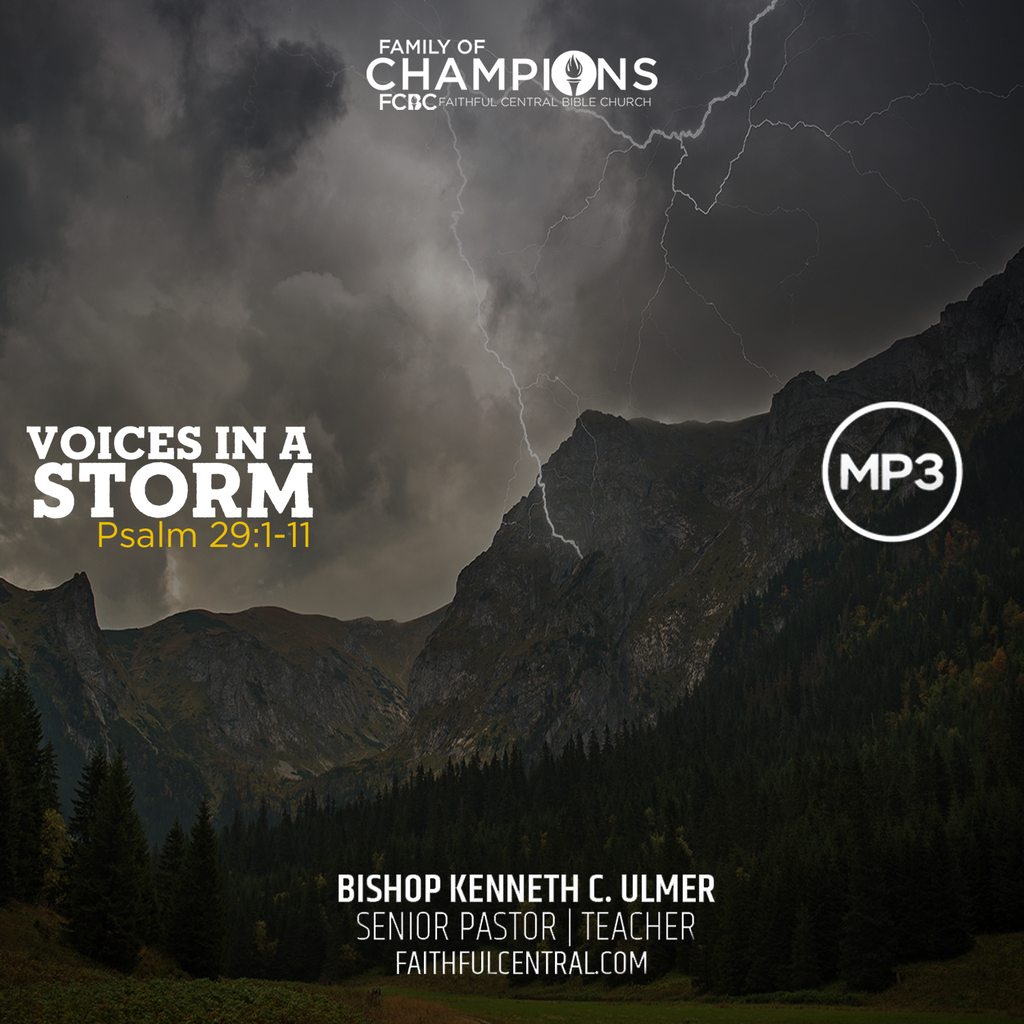 Voices In A Storm (MP3 Download)