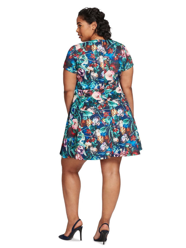 Luciana V-Neck Floral Print Fit And Flare Dress - Plus - ALEXIA ADMOR