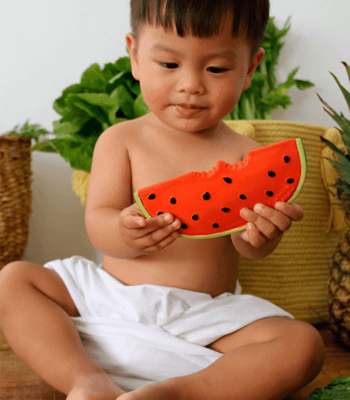 Oli and Carol Rubber Watermelon Teether