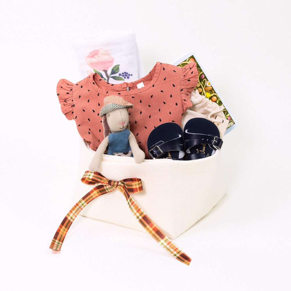 Adorable Baby Girl Gift Basket with Rylee and Cru Apple Seed Dress