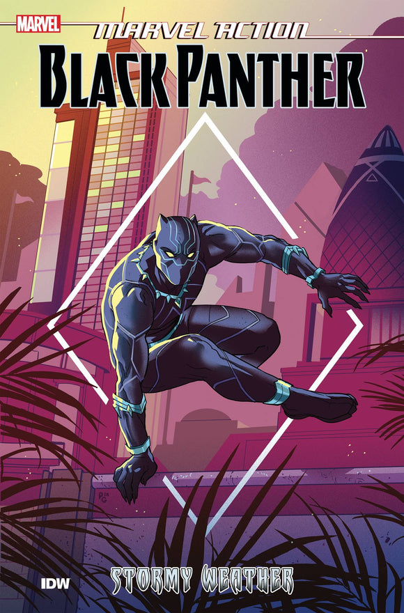 Marvel Action Black Panther (Paperback) Book 01 Stormy Weather Graphic Novels published by Idw Publishing