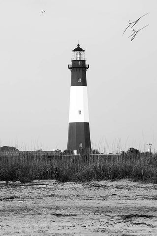 Tybee Lighthouse of Grandeur limited edition fine art print signed and numbered