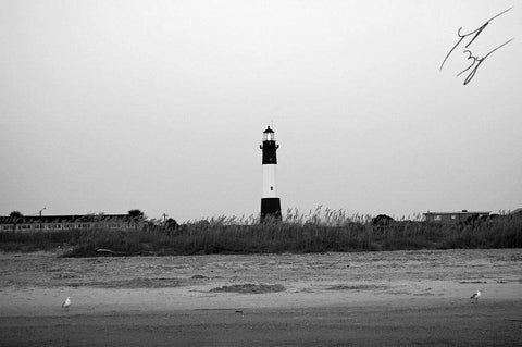 Tybee Island Lighthouse limited edition fine art print signed and numbered