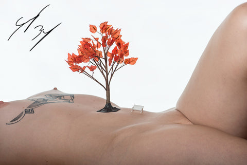 female nude body as a landscape