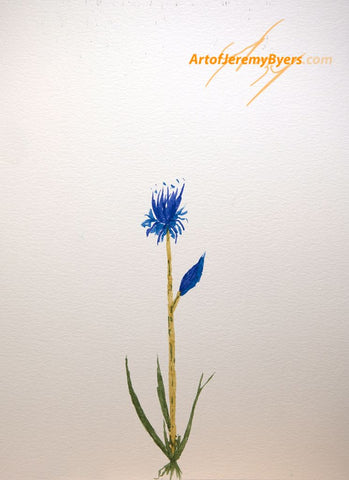Lone wildflower original watercolor