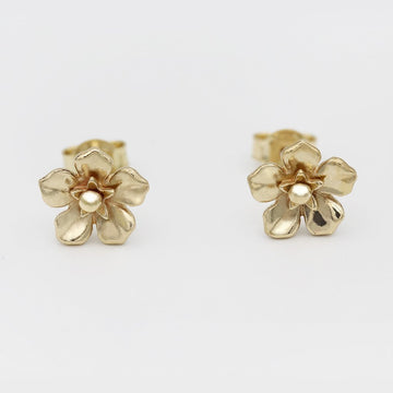 Forget Me Not Earrings/ 9ct Yellow Gold