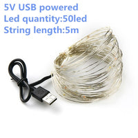 string light led garland 1m 2m 5m 10m USB battery powered outdoor Warm white/RGB festival wedding party decoration fairy light