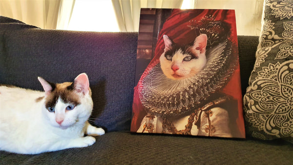Fair Princess - Satisfied Customer 1 Posh Pet Portrait