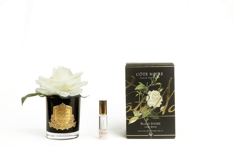 COTE NOIRE -  French Rose Ivory white in black glass