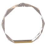 Beveled Octagon - AwardsPlusGI