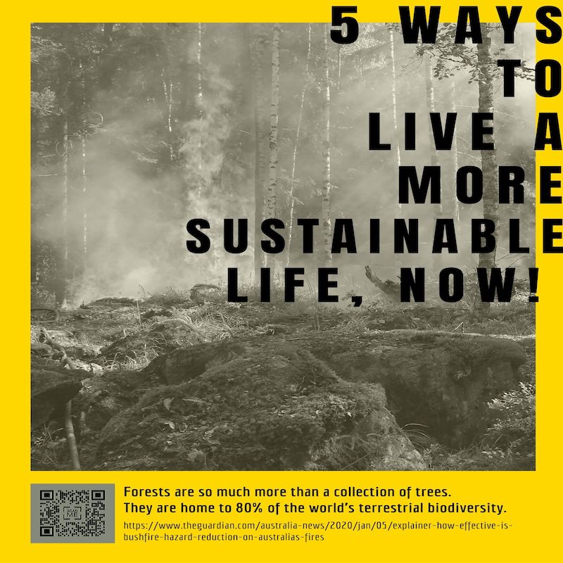 5 STEPS  TO LIVING A MORE SUSTAINABLE LIFE.