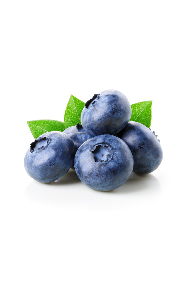 Organic Blueberries Punnet