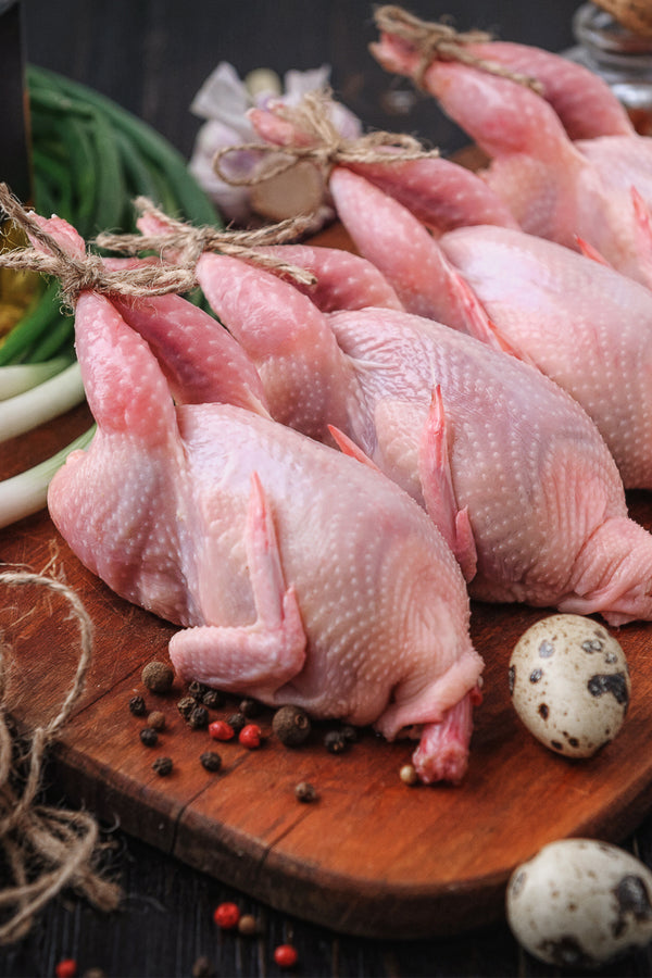 My Chicken Rules Frozen Quail 6 Large