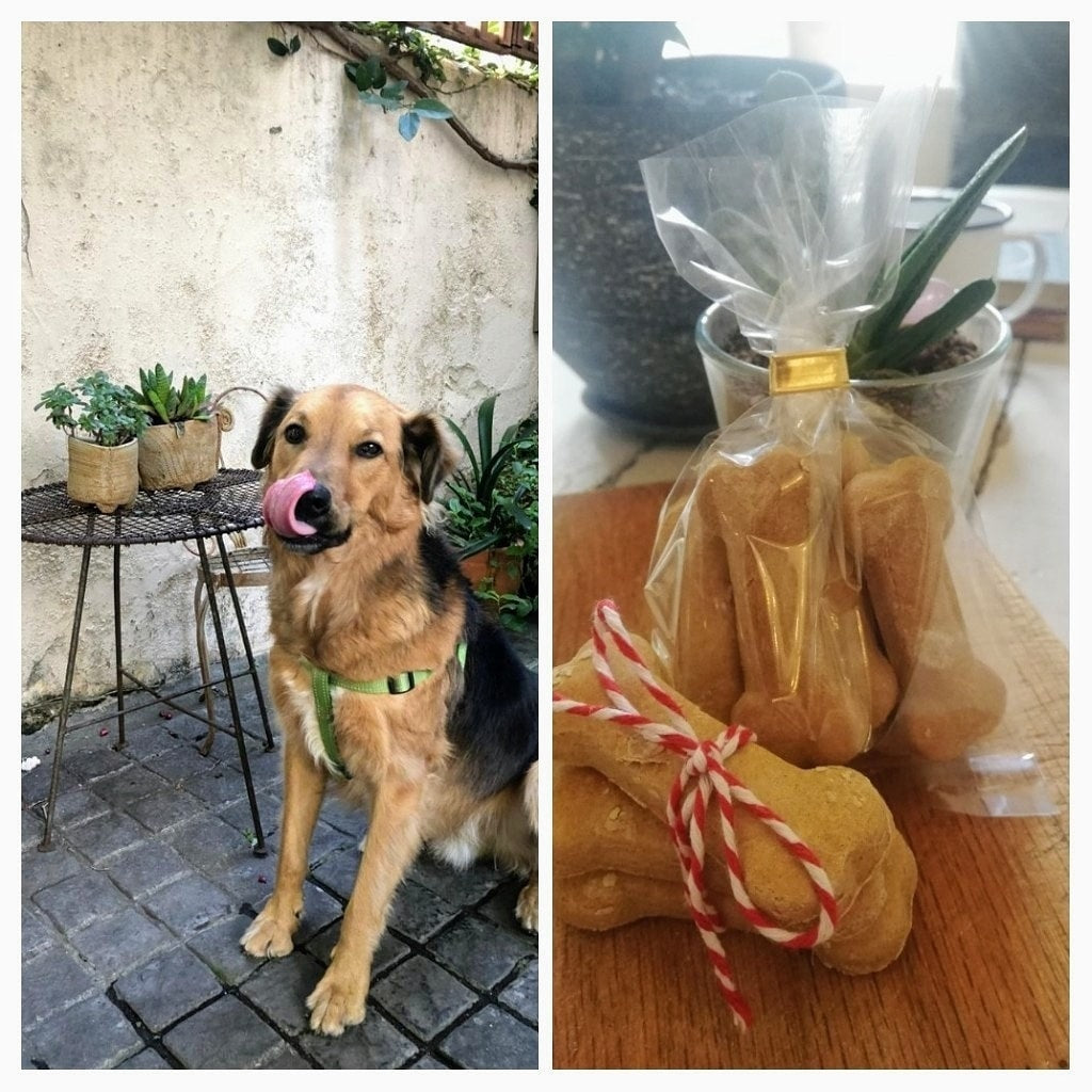 Rosemary DOG Biscuits