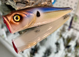 Blue Threadfin Shad Popper