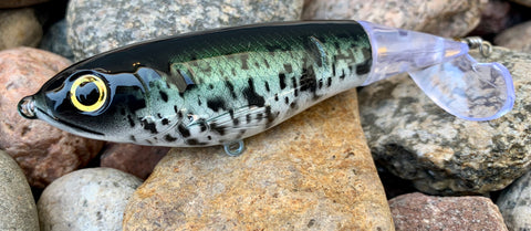 Black Crappie 100mm Topwater Plopper