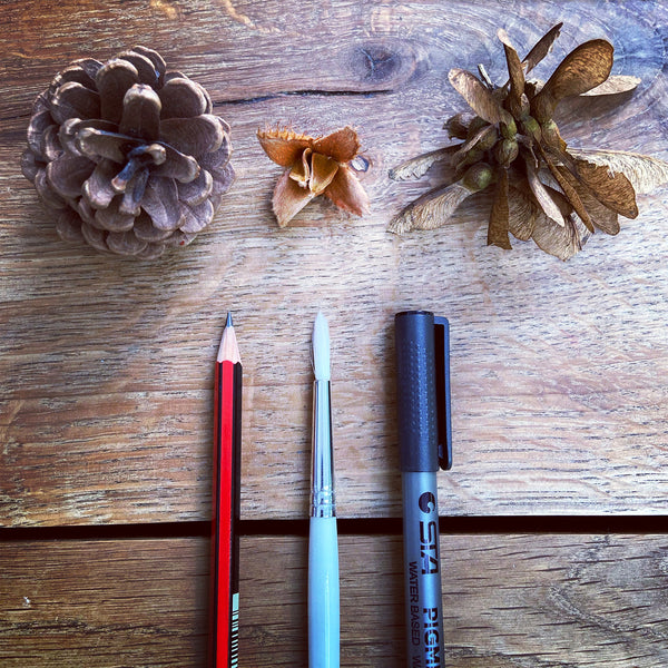 pencil, paintbrush and fineliner with autumnal objects on a wooden background.