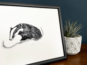 Badger giclée print in black frame on wooden surface. Navy blue wall behind and zebra haworthia in a pot beside.