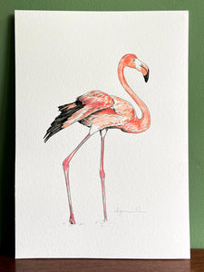 Flamingo giclée print with handpainted watercolour plumage, in a white frame, standing on a wooden surface. Green wall behind.