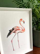 Load image into Gallery viewer, Flamingo giclée print with handpainted watercolour plumage, in a white frame, standing on a wooden surface. Green wall behind. Pot plant standing next to it.