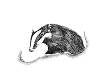 Load image into Gallery viewer, Monochrome badger giclée print.