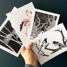 Load image into Gallery viewer, Greetings cards pack of four. Swooping owl., Flamingo, Red Riding Hood and Joy