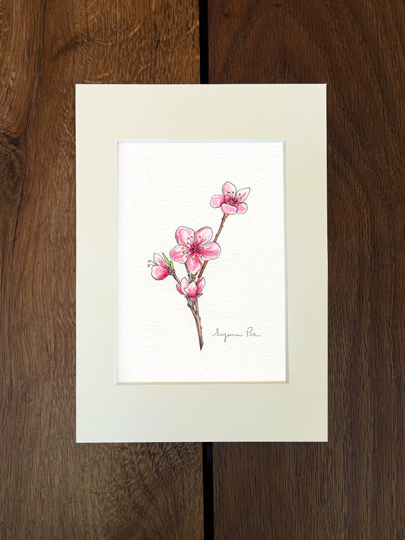 Handpainted cherry blossom design using fineliner, watercolour and white ink in an ivory mount on a wooden background.