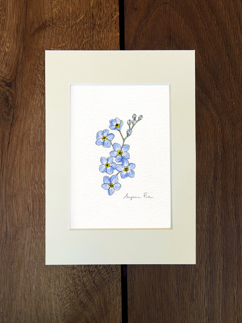 Handpainted forget-me-not design using fineliner, watercolour and white ink in an ivory mount on a wooden background.