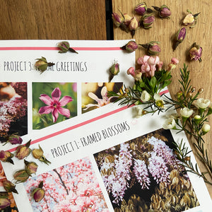 Floral reference photograph sheets with delicate waxflowers and dried rose buds on a wooden background.