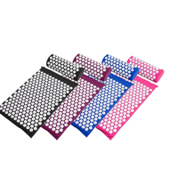 Miss Fitness' Acupressure Mat and Pillow