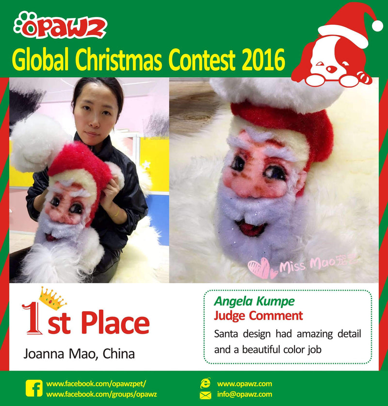 OPAWZ Global Christmas Contest 2016 Top 10 - Congratulations!