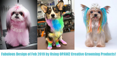 Fabulous Design of Feb 2019 by Using OPAWZ Creative Grooming Products!