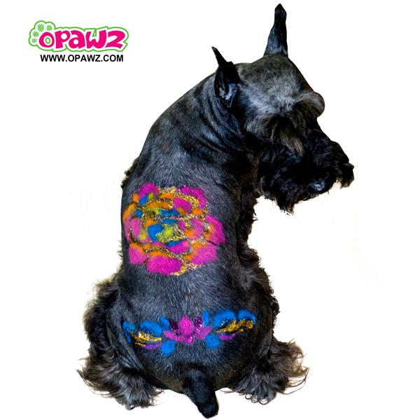 Butterfly Dog Tattoo with OPAWZ Glitter Gel and Pet Hair Chalk [Video]