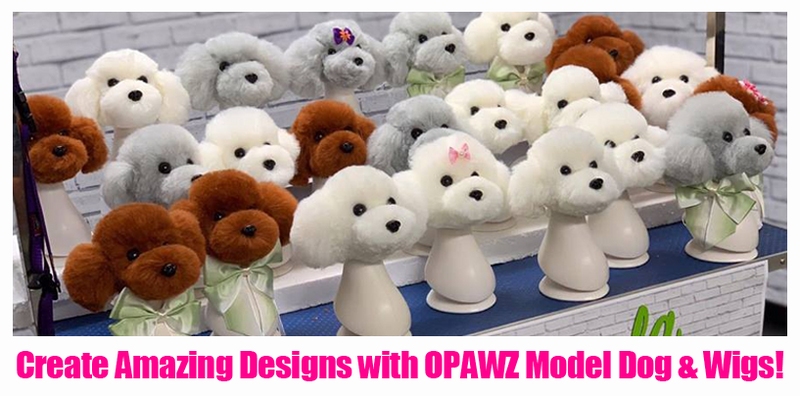 Create Amazing Designs with OPAWZ Model Dog & Wigs!