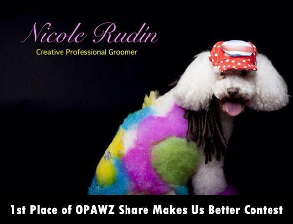 Sharing Makes Us Better Contest - 1st Place - Nicole Rudin