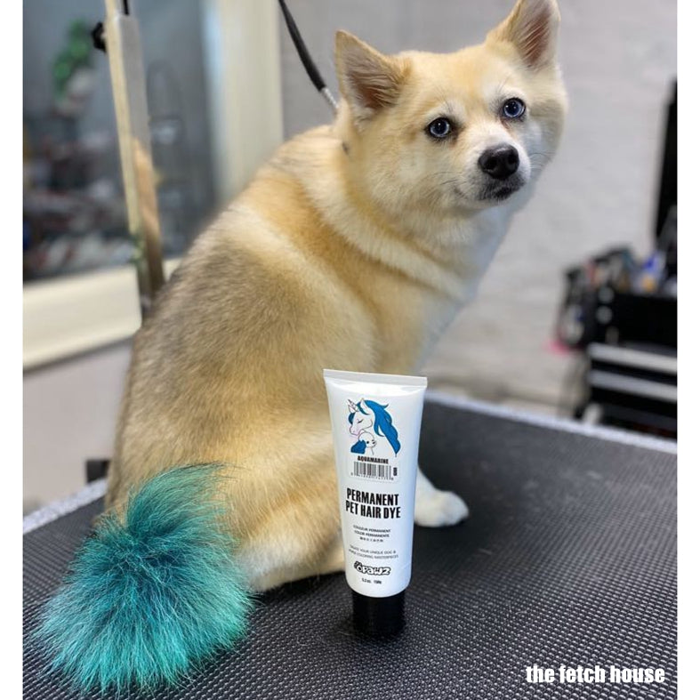 Dog Hair Dye-Aquamarine (PD19)